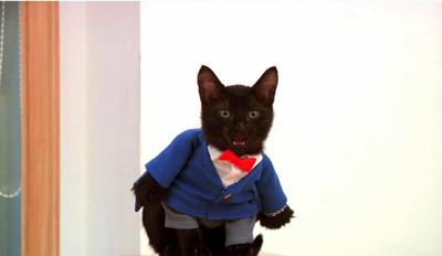 黒猫 コナン