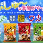 【ワカコ酒×大人のおつまみシリーズ】コラボ商品を夏季限定販売決定!